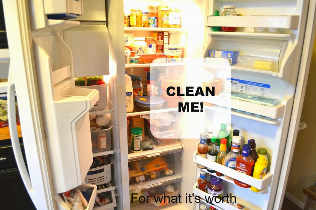 cleaning the refrigerator. clean fridge cleaning the refrigerator