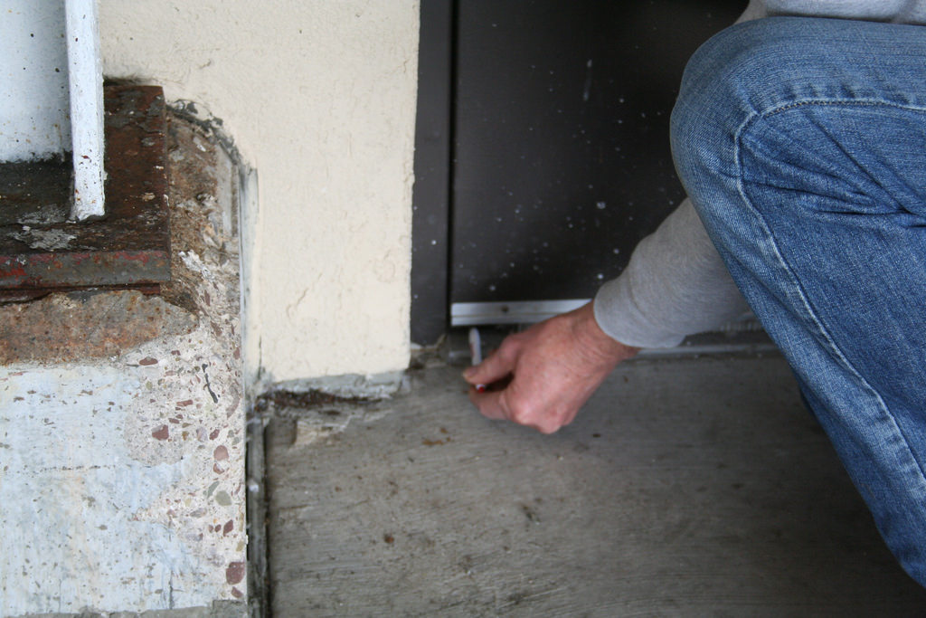Seal all gaps to prevent rat entry into building