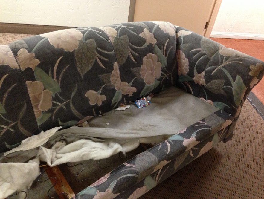 sofa cleaning mistakes to avoid