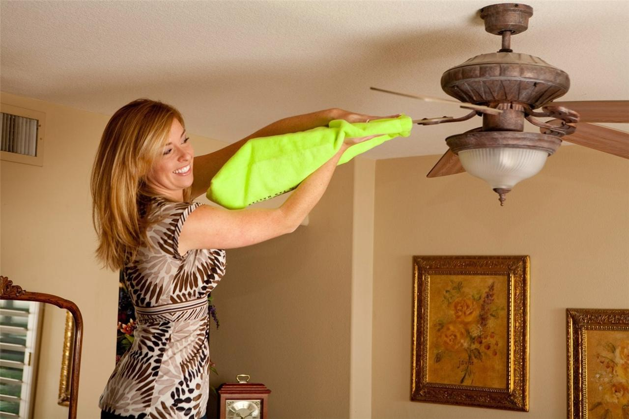 Ceiling fan maintenance and cleaning tips ideas by mr right aloadofball Gallery