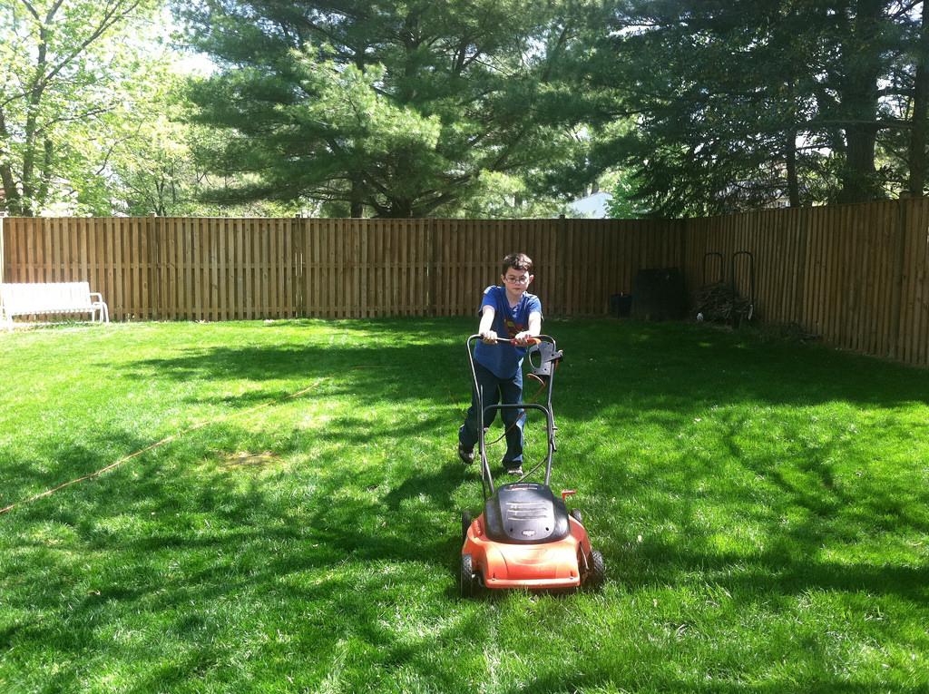 mow your backyard often
