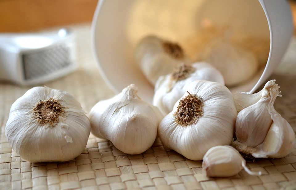 use garlic to get rid of mosquitoes in rainy season