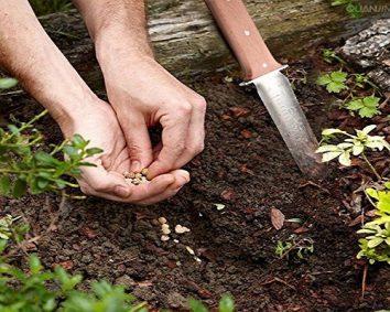 Japanese Hori Hori digging tool
