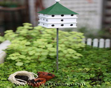 A mini birdhouse