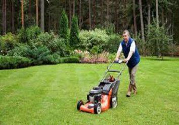 Go for harder landscaping garden design