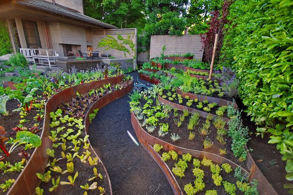 Vegetable Garden Layout Ideas Ideas By Mr Right
