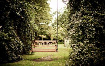 backyward-and-gardening-ideas